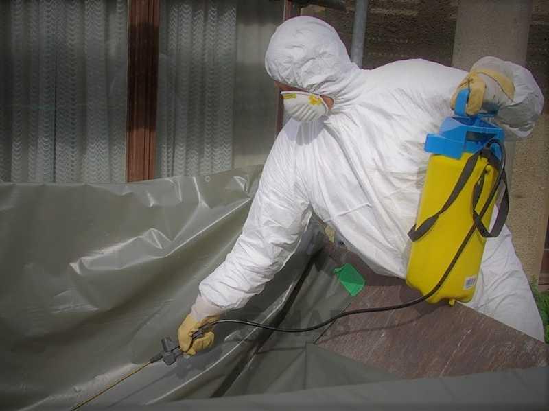 Noktaisg.asbestsokum